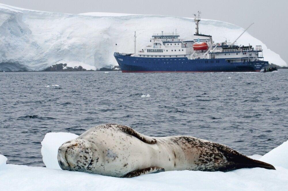 Die Plancius in der Antarktis