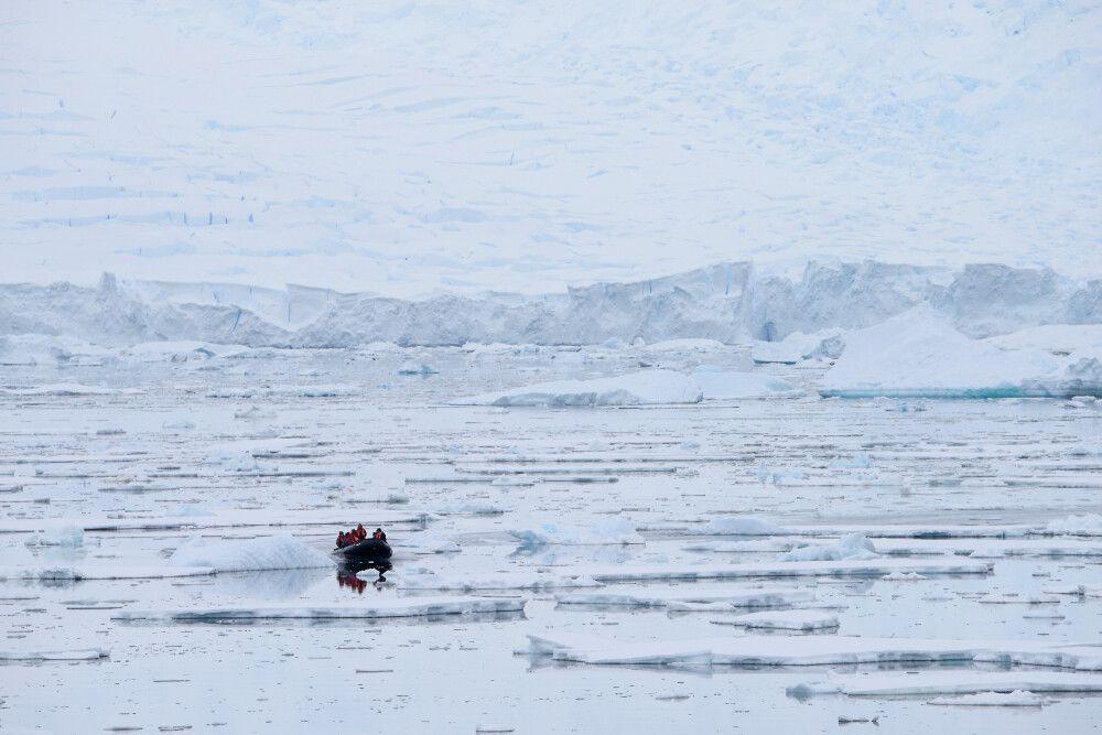 Zodiac, Antarktische Halbinsel