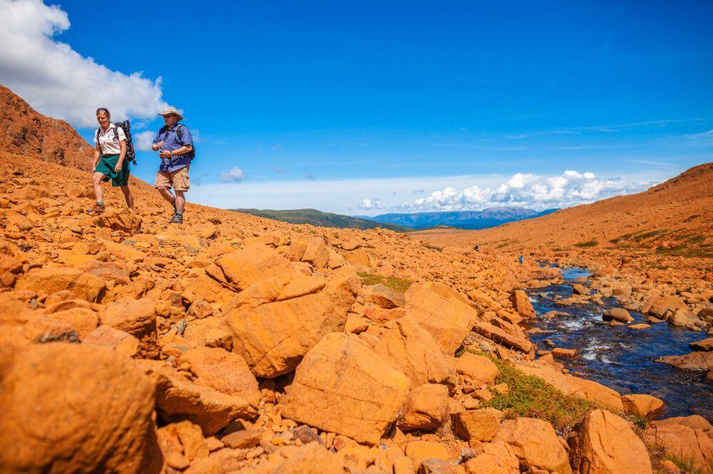 Wanderer, Western Tablelands, Gros Morne NP