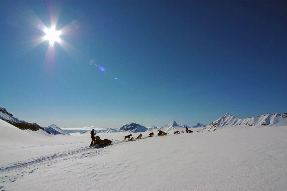 Huskyexpedition im Schein der Mitternachtssonne