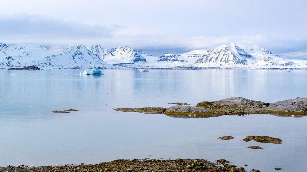 Unterwegs im Kongsfjord