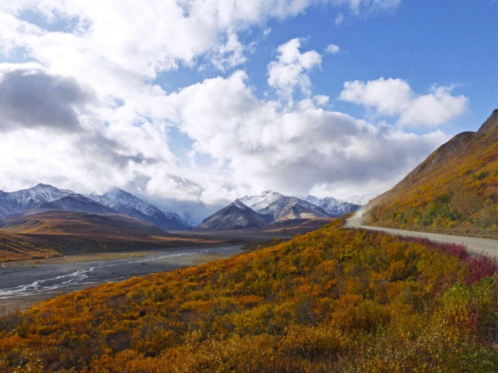 Auf dem Weg zum Polychrome Overlook, Denali-Nationalpark